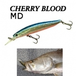 Smith Cherry Blood MD